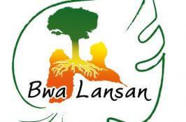 bwa_lansan